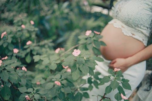 baarmoeder zwanger